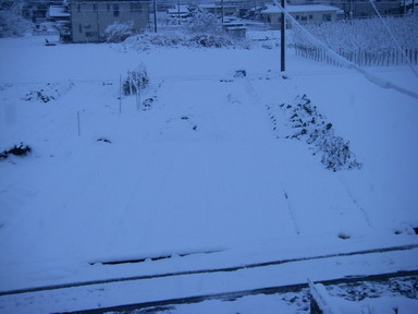 雪景色4_12_12_10
