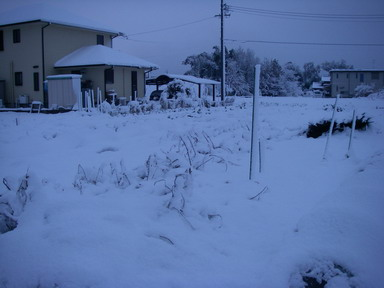 雪景色1_12_12_10