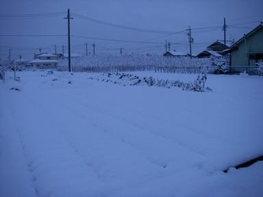 雪景色2_12_12_10