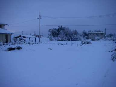 雪景色3_12_12_10