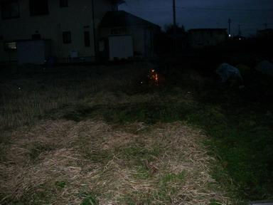 草刈12_12_29