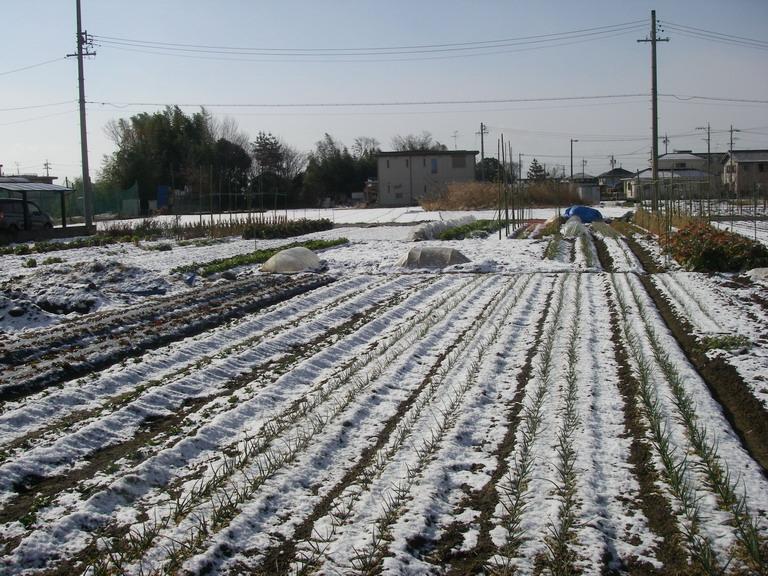雪景色13_02_24