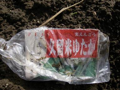 グリーンピース袋13_03_02