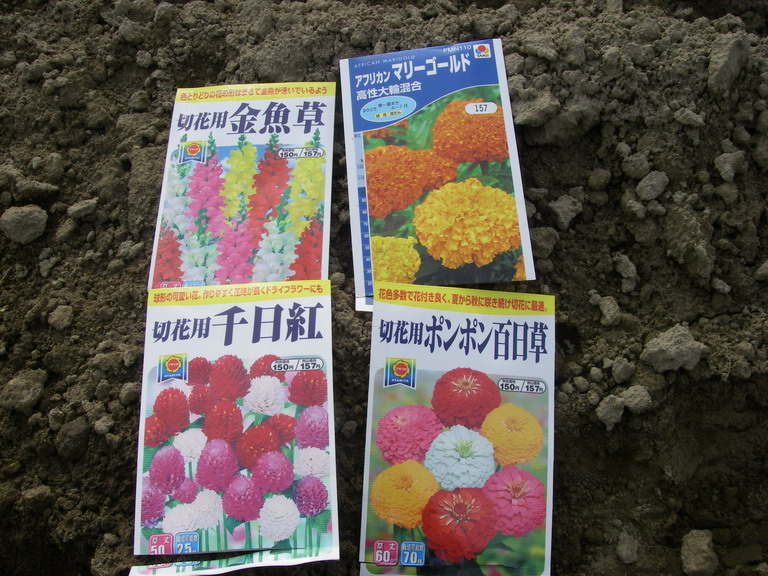 種袋13_03_31
