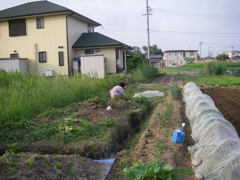 耕作放棄地13_05_26
