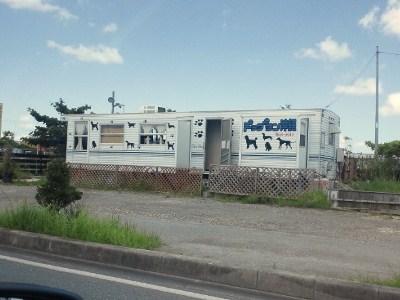 沖縄 ドッグランが