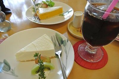 11.4 レアチーズケーキ&パンプキンタルト