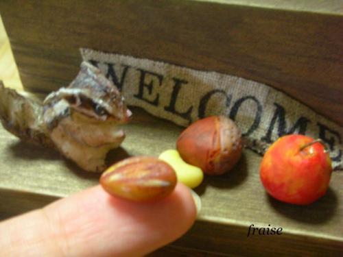 シマリスと木の実2