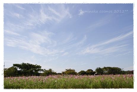 _MG_3493-2012.jpg