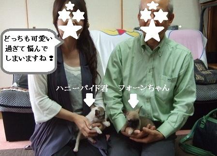 DSCF9512_20121008144435.jpg
