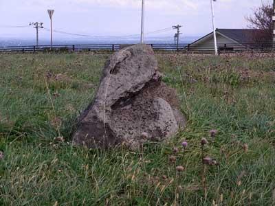 ヒキガエル石