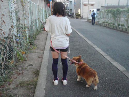 鬟シ縺・クサ辟。莠玖ヲ九▽縺九k+010_convert_20120929102902