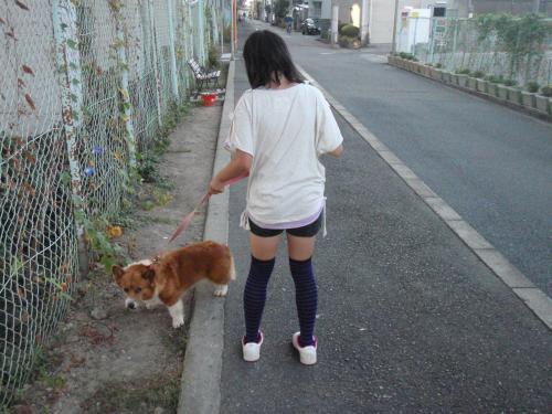 鬟シ縺・クサ辟。莠玖ヲ九▽縺九k+009_convert_20120929102815