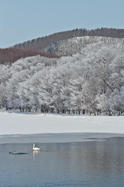 厳冬の網走湖