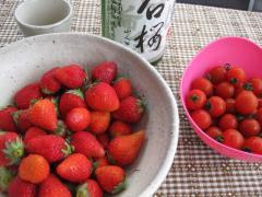 itigo&tomato