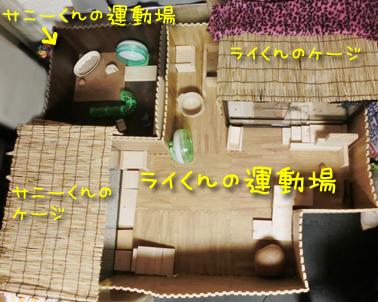 SummerSpace2012_2.jpg