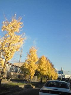 20121127fukusho.jpg