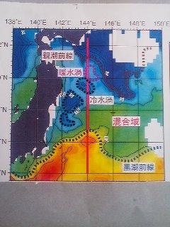 太平洋の海流