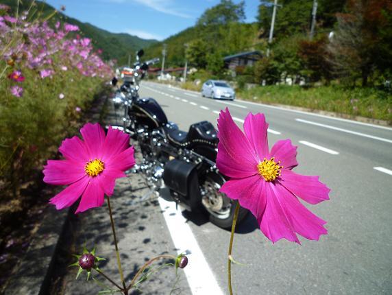 2012_1005戸田別館 0013