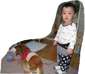2012_1104_183449-IMG_6319_convert_20121110194007.jpg