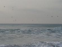不良中年釣査団-海2
