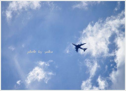 飛行機806-3