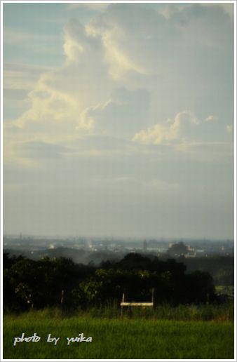 風景806-1