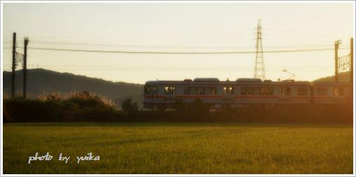 電車808-1