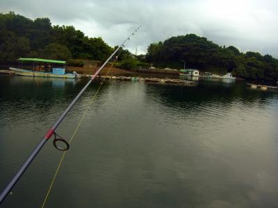 120815朝の釣り