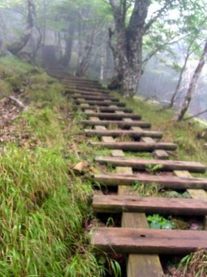 聖宝八丁の坂後半の木梯子階段
