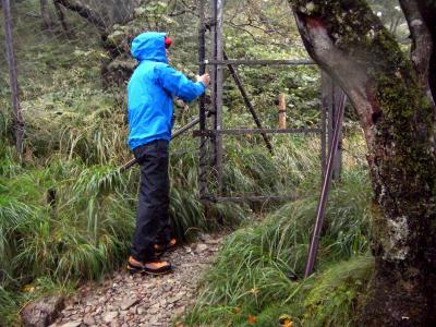120916オオヤマレンゲ保護のフェンス
