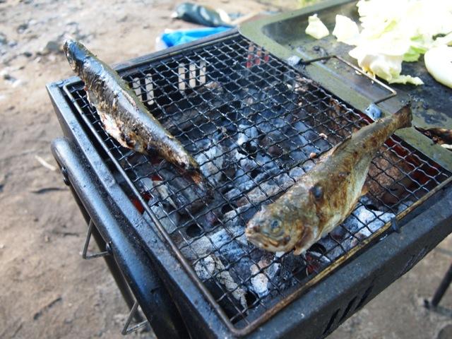 飯能釣り (20)