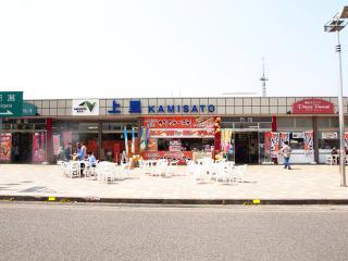 上里SA (11)