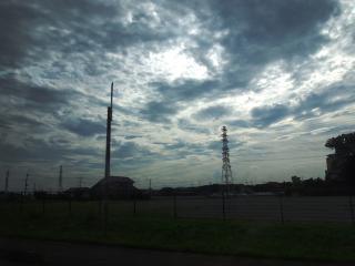 いちごの里よしみ(道の駅) (11)