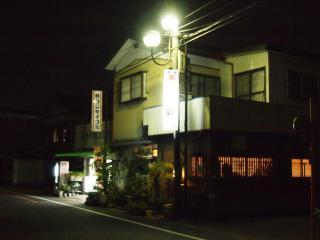 菊 (11)
