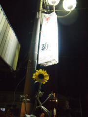 季節料理 菊 (11)