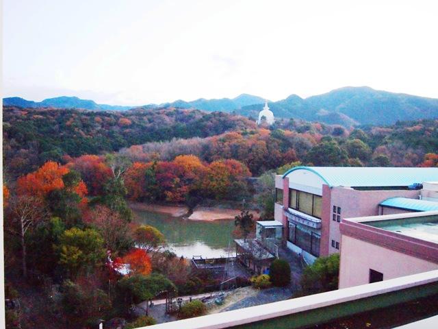 レイクサイドホテル久山 (13)