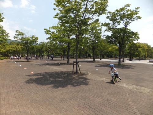 takumi_20130522215204.jpg