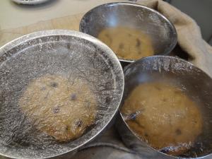 シュトーレーン発酵(縮小)