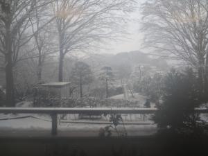 雪景色(縮小)