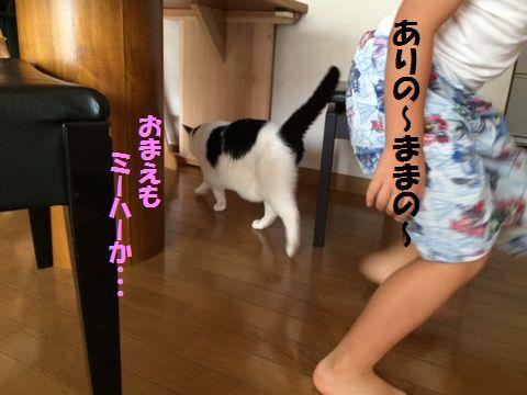 futari4.jpg