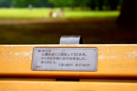 代々木公園のベンチ