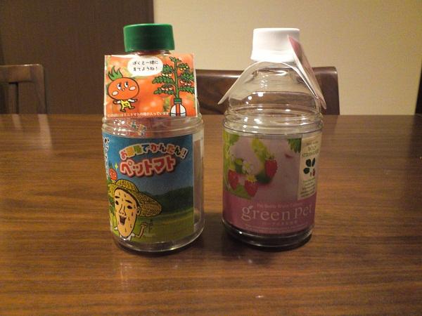 ペットボトル菜園