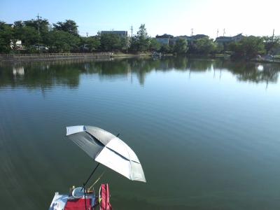 申 上の池