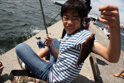 釣りアイナメ