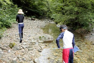 森きち 細い川へ