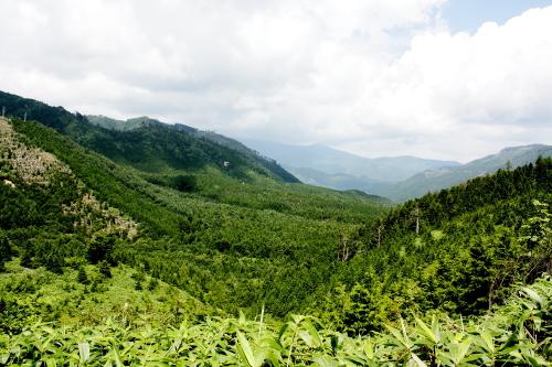 森きち 山の頂上