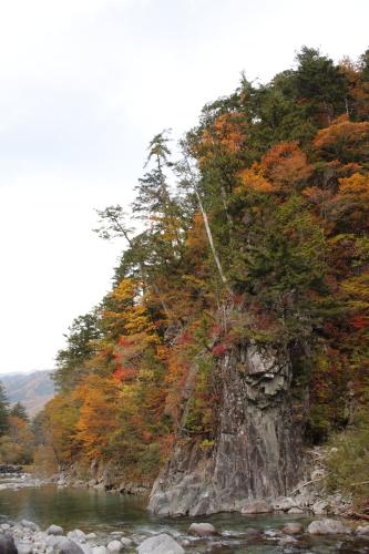 森きち 10-27 17