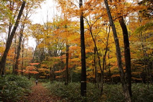 森きち 10-27 21