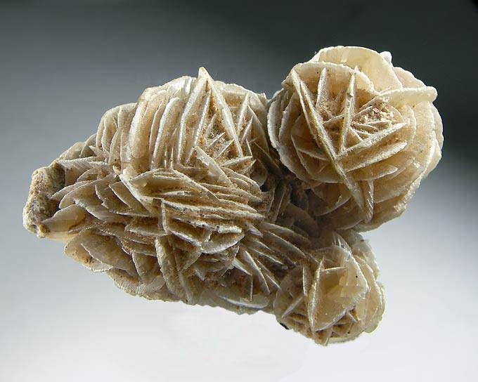 No.41 Gypsum